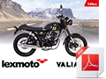 A6 Bike brochure for Valiant EFI